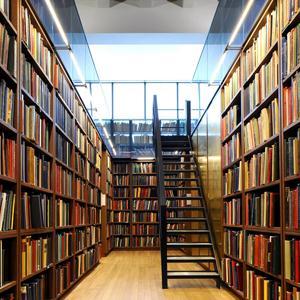 Библиотеки Сурского
